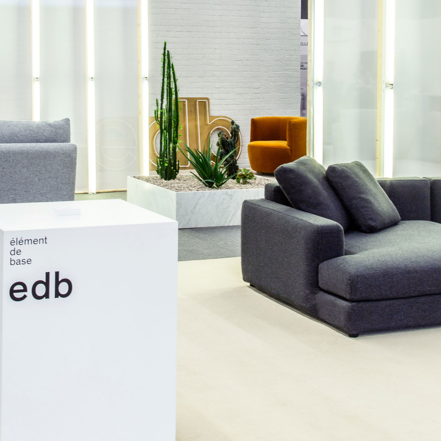 edb in spaces : SNH